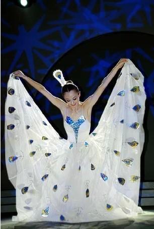 少数民族--傣族舞蹈服装在舞台上的魅力