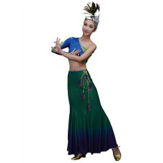 新款少数民族舞蹈服装女款塑身傣族舞蹈演出服装孔雀舞服定制!