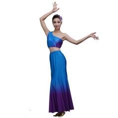 舞蹈演出服装定制新款傣族演出服装蓝色塑身民族舞蹈服定制!