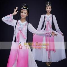 经典剧目《彩蝶飞舞》舞蹈演出服装粉色艺考女款舞蹈表演服装舞台演出服装定制!